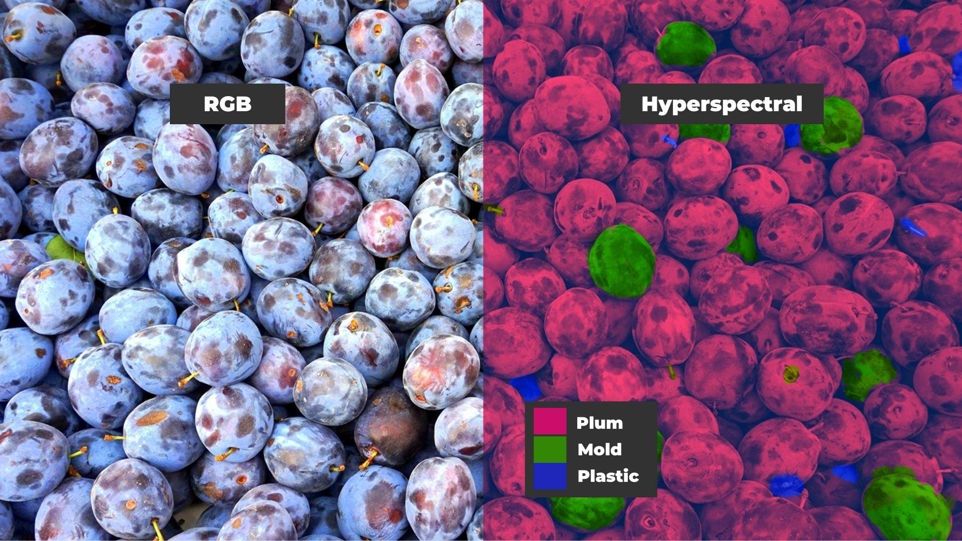 fruit-hyperspectral imaging vs normal camera